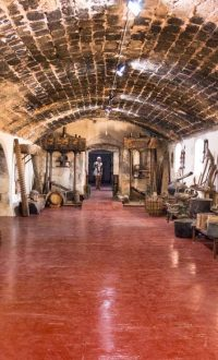Museum vinolio